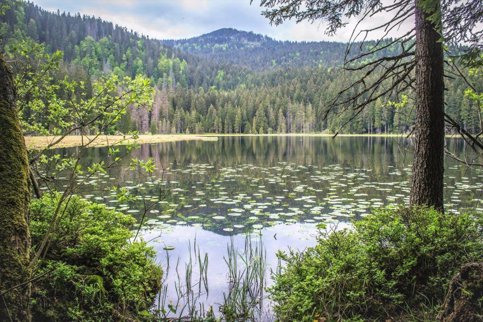 Šumava Mountains